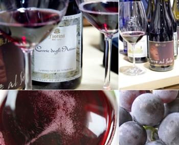 История возникновения вина Ламбруско