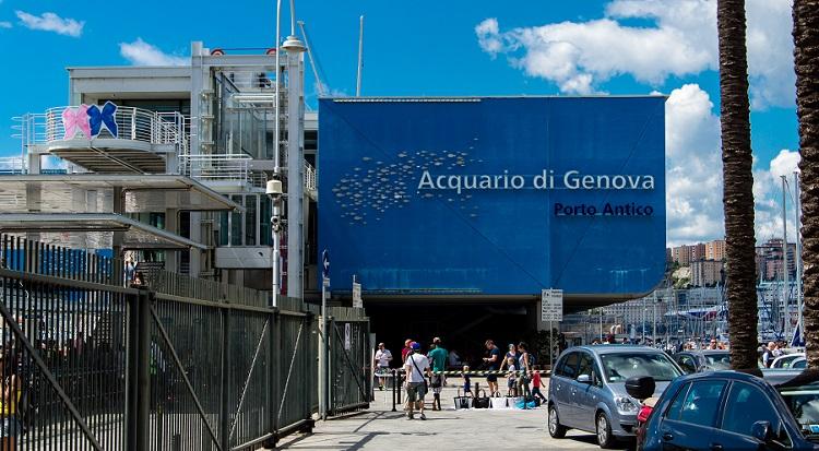 Что посетить в Генуе - зрелищный городской Аквариум