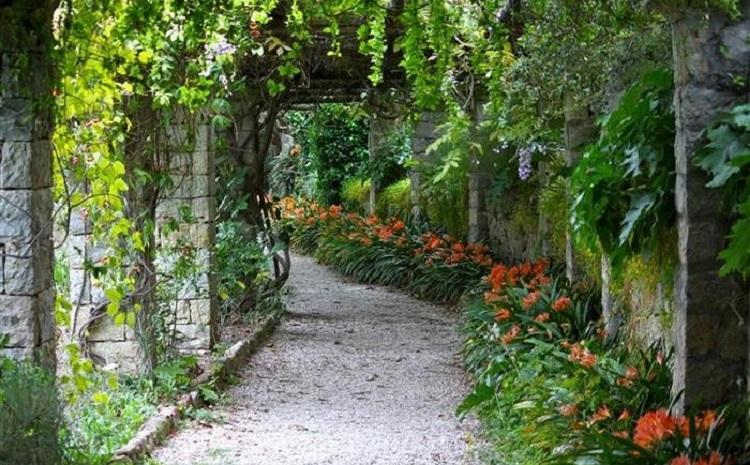 Ботанический сад Падуи и история создания всемирно известного уголка природы
