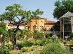 Ботанический сад Падуи - время работы и стоимость билетов