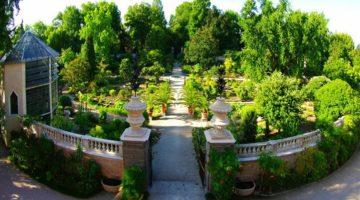 Чем знаменит Ботанический сад в итальянском городе Падуя