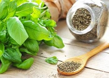 Что входит в состав итальянских трав - описание основных ингредиентов