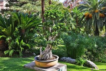 Ботанический сад в Кальяри