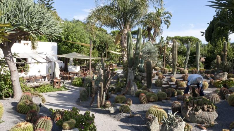 Сад Равино на острове Искья