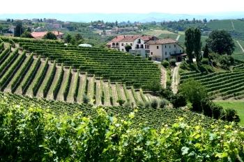 Пьемонт - родина игристого вина Мартини Асти