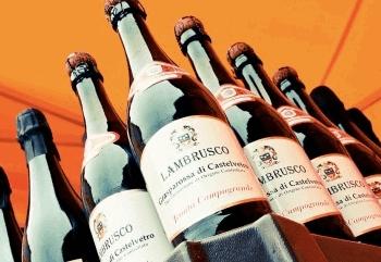 Виды и стоимость игристого вина Ламбруско