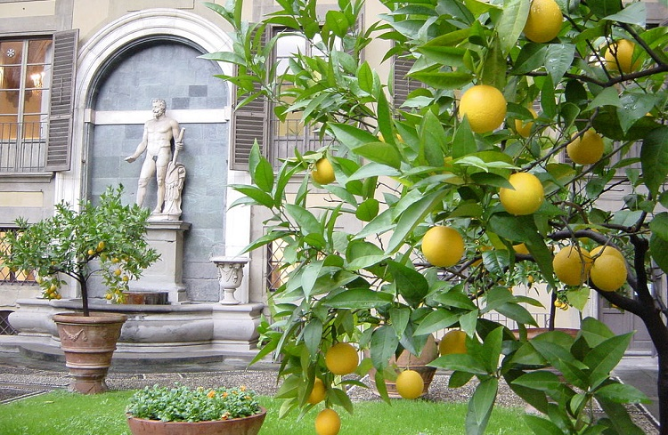 Дворец палаццо Медичи-Риккарди во Флоренции - часовня волхвов
